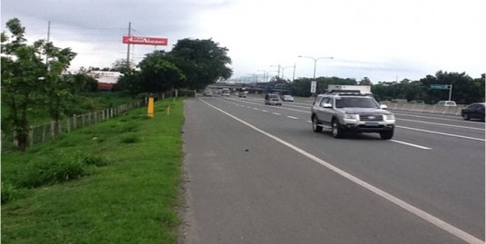 Industrial-Commercial lot along SLEX