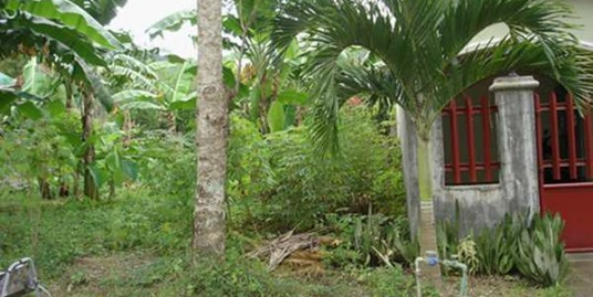 Lot for sale in Collegeville, Los Baños