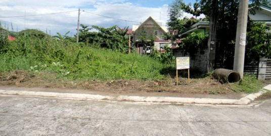 168 sqm. Lot for sale in Malolos, Bulacan