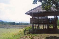 61-Hectare Farm Lot in Candelaria, Zambales