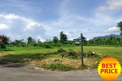 Hacienda Sta. Monica 936 sqm. Foreclosed farm lot