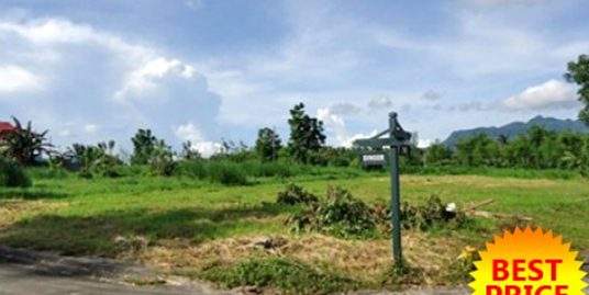 936 sqm. Residential Farm lot in Lipa City