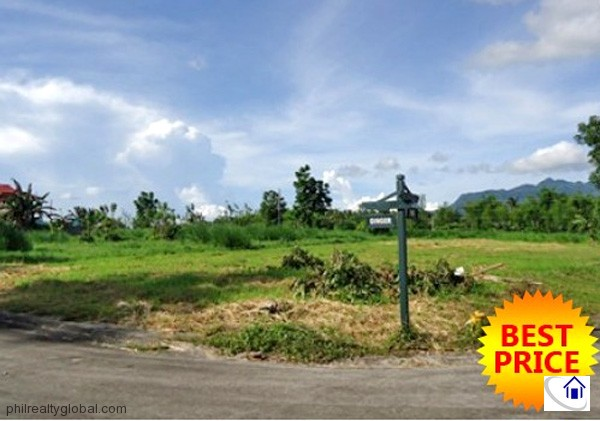 Hacienda Sta. Monica 936 sqm. Foreclosed farm lot