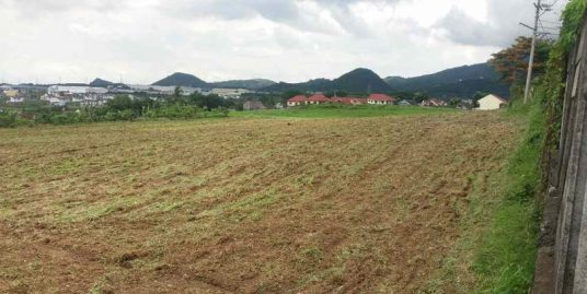 15 Hectares Lot in Batangas