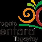 MGCT logo