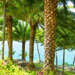 tali_beach_020