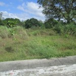 Lot for sale in Hampton Place Batangas