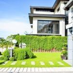 Front Lawn Garden