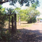 61-Hectare Farm Lot in Candelaria, Zambales