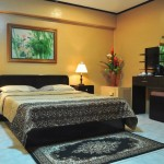 EXECUTIVE ROOM - Airconditioned room with mini ref, DVD player, 32-inch Flat Screen tv, indoor jacuzzi
