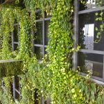 Gramercy Residences16