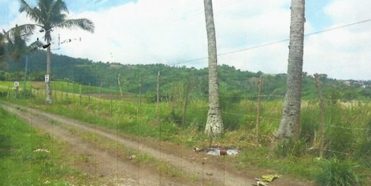 9,800 sqm. Lot for Sale in Tagaytay City