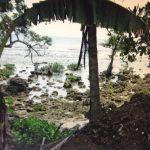 Real Quezon Beachfront lot