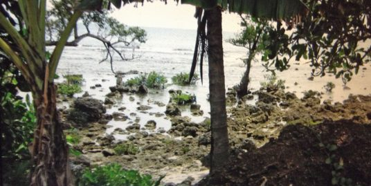 3-hectare Beachfront lot for sale in Real, Quezon