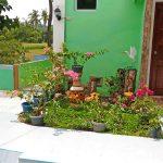 santiago-isabela-3-hectare-farm-2
