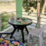 santiago-isabela-3-hectare-farm-7