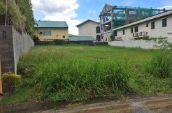 Ayala Southvale Village - lot for sale