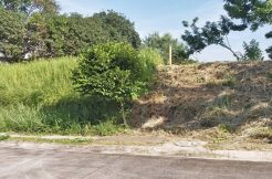 Ayala Westgrove Heights Silang Cavite Lot for sale