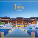 Playa Laiya Beach Lots - beachlub 3