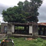 Batangas Farm 1