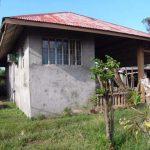 Batangas Farm 5