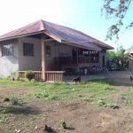 Batangas Farm 6