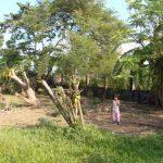 Batangas Farm 8