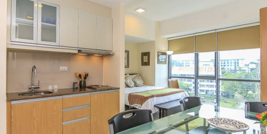 Penthouse Studio Unit in Viceroy Tower 3, Mckinley Hill, Taguig City