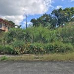 Royale Tagaytay Lot for sale - 297 sqm (2)