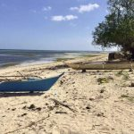 Daanbantayan - Medellin 12-hectare beachfront property for sale - 1