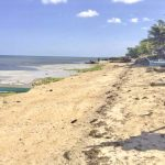 Daanbantayan - Medellin 12-hectare beachfront property for sale - 2