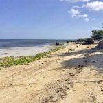 Daanbantayan - Medellin 12-hectare beachfront property for sale - 3