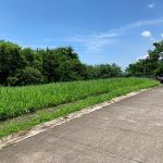 Ayala Greenfield Estates 667sqm. lot for sale