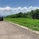 Ayala Greenfield Estates 667sqm. lot for sale1