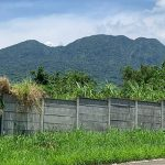 Ayala Greenfield Estates 667sqm. lot for sale3