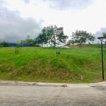 Ayala Greenfield Estates, 731 sqm. Lot for sale 2