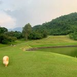 Ayala Greenfield Estates Fairway Lot for sale