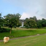 Ayala Greenfield Estates Fairway Lot for sale1