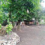 Malvar Batangas Lot for sale1