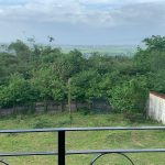 Ayala Greenfield Estates Calamba House for sale - view from balcony