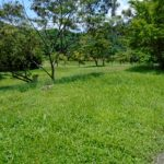 Ayala Greenfield Estates, Lot for sale in Phase 5B 439sqm.