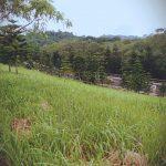 The Hillside, Tagaytay Highlands 432sqm Lot for sale 3